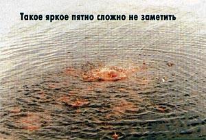 http://matchfishing.ru/images/articles/djachenko/part1/image002.jpg