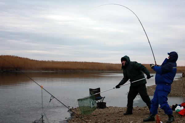 http://matchfishing.ru/upload/iblock/310/4-.jpg